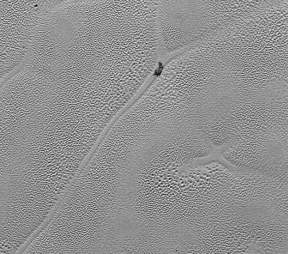Далекий слизняк - с Плутона - остановился на распутье.